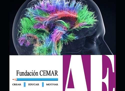 Seminario Universitario de Neurociencias y Educación